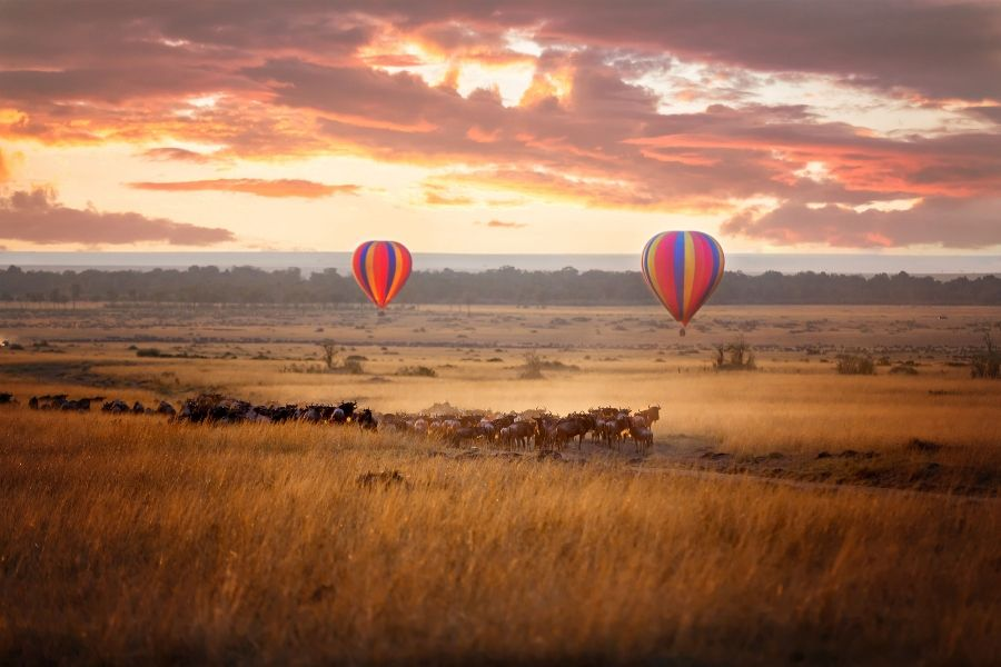 Seronera River Valley with herds of wildebeest and hot air balloon