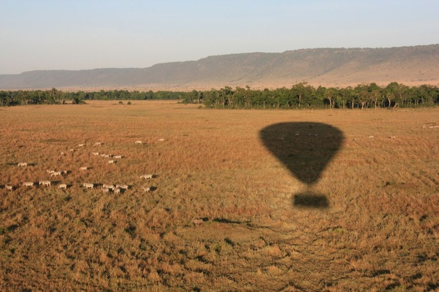 Balloon Safari View of Wildlife. What Makes a Balloon Safari in the Serengeti a Once in a Lifetime Experience. Serengeti Acacia Camps