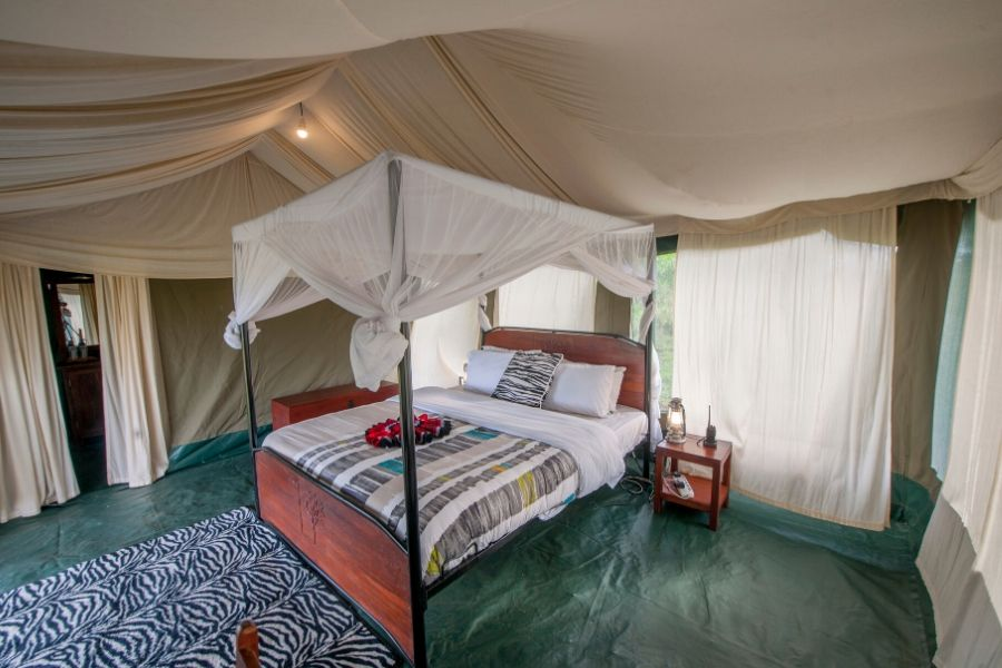 Serengeti Acacia Migration Camp Room. Great Migration Accommodation Permanent Versus Mobile Tented Camps. Serengeti Acacia Camps
